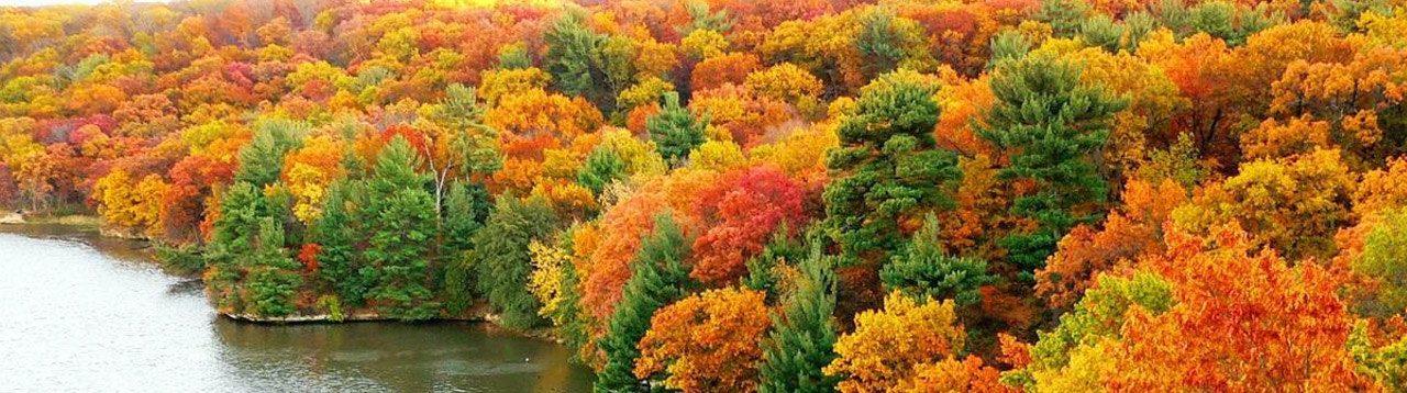Осенние праздники.